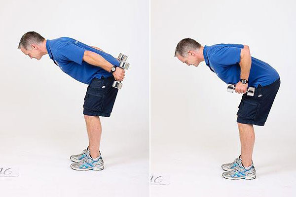 Standing Bent-Over Arm Dumbbell.